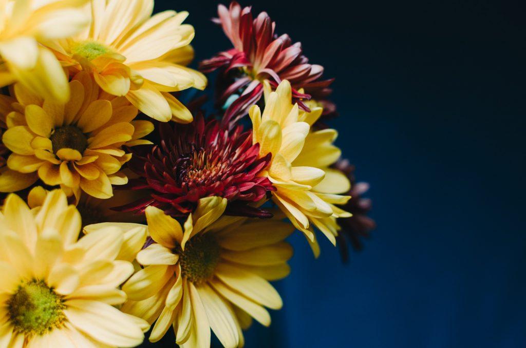 flores-otoño-3