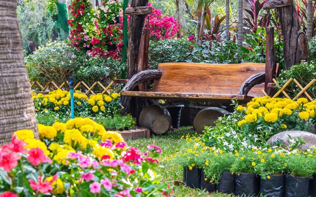diseñar tu jardín