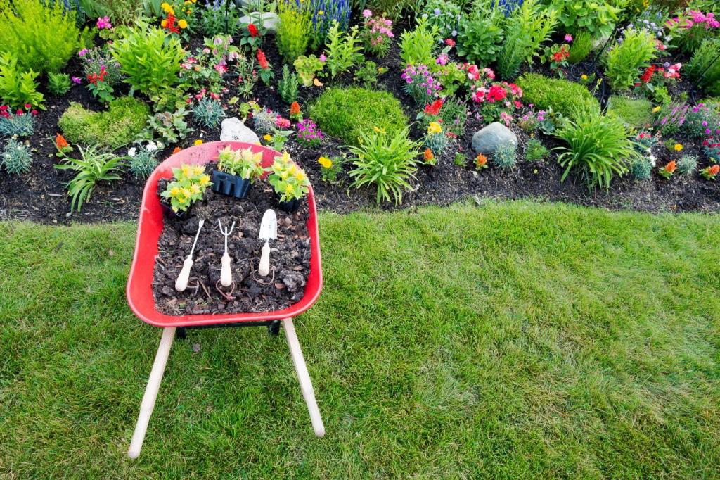 diseño tu jardín pequeño