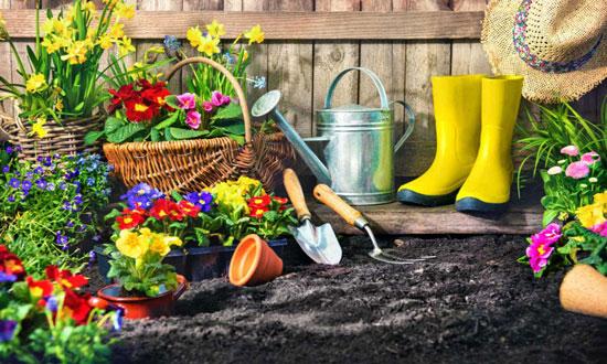 mejores flores de jardín
