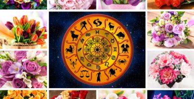 Flores del zodiaco